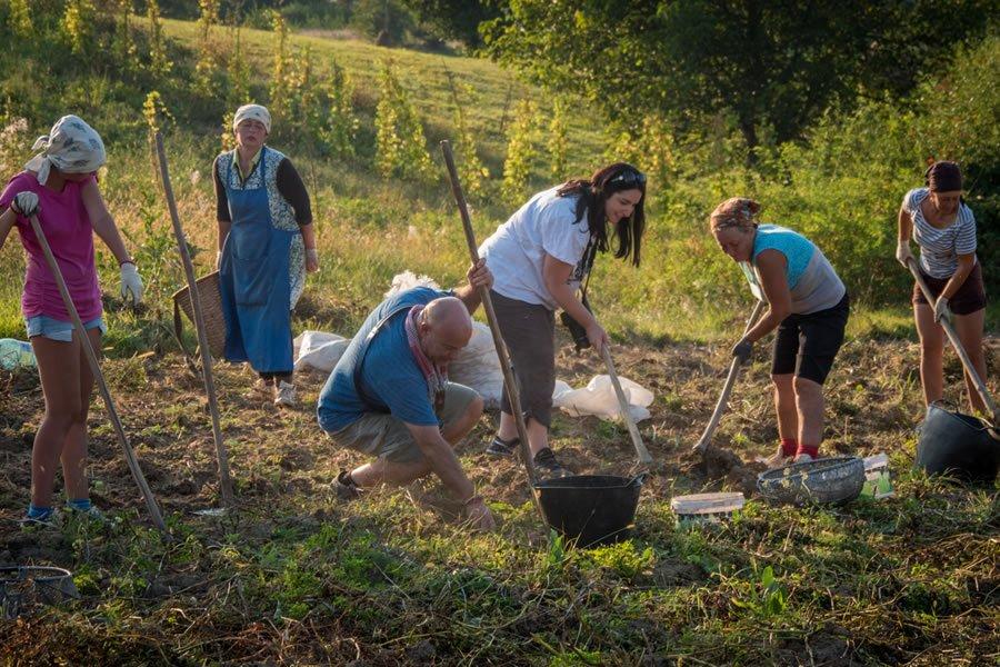 True-Romania-Tours-Contribute-to-Local-Economy