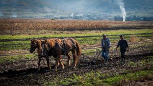 village farmers photo tour romania