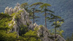 Domogled Valea Cernei National Park - Top 11 attractions in western Romania