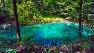 Ochiul Beiului Lake - Top 11 attractions in Western Romania