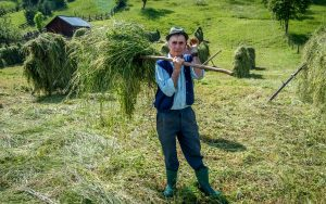 Haystacks - Best 15 attractions in Maramures