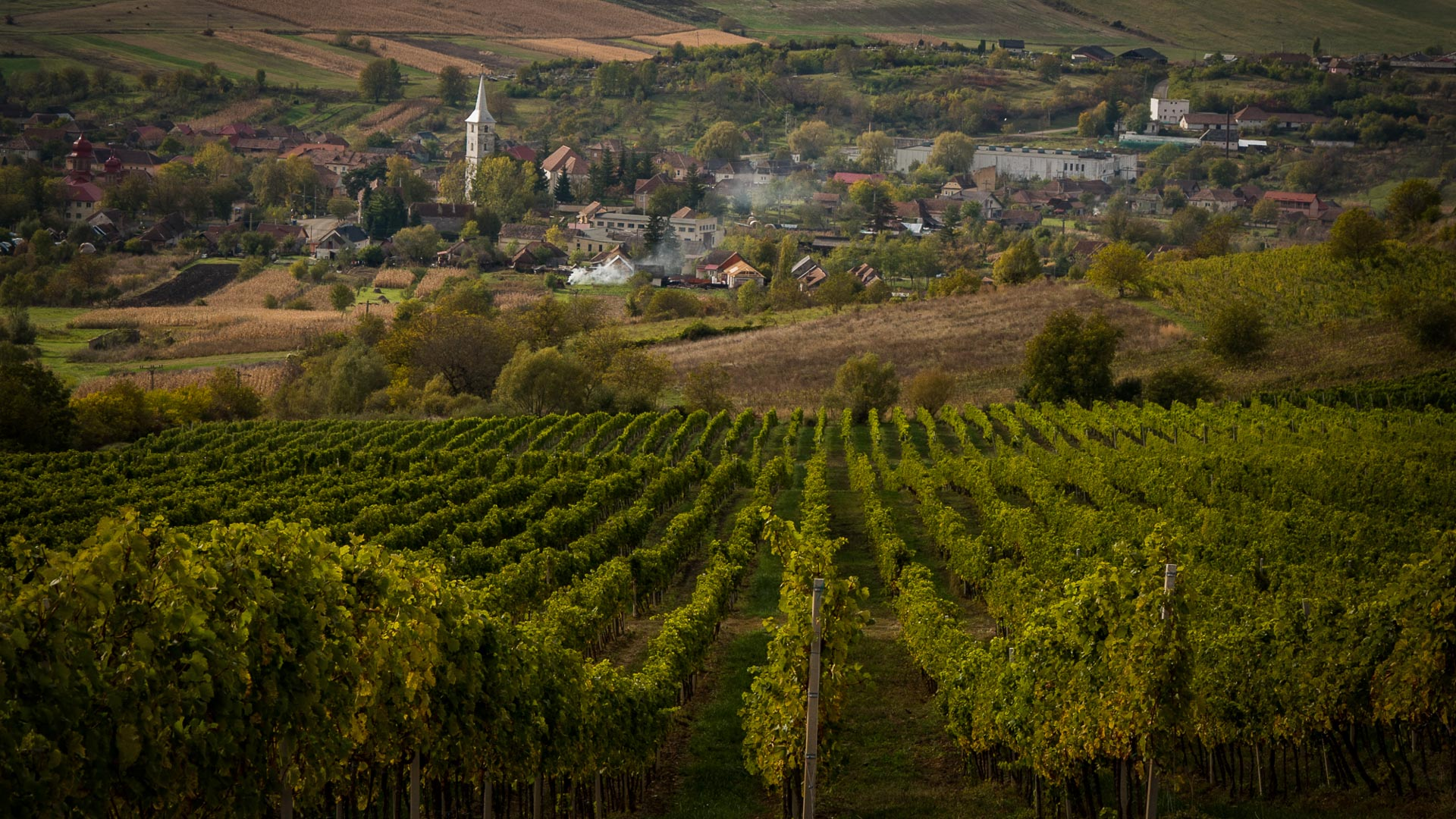 Fall in Romania – 12 stunning pictures that illustrate the season of harvest