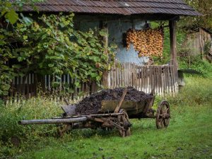 Fall in Romania - haning vegetables to dry