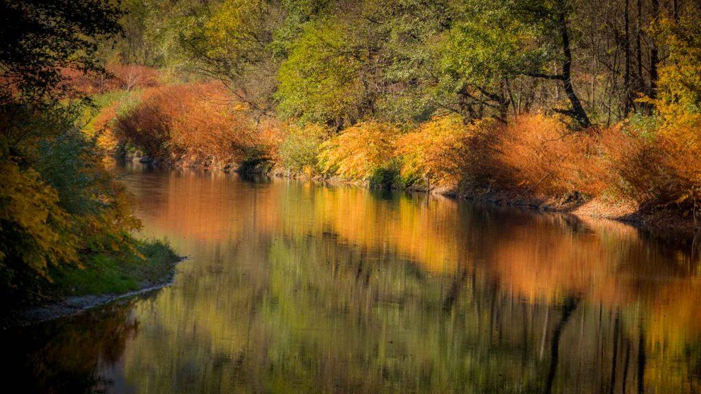 Aries River