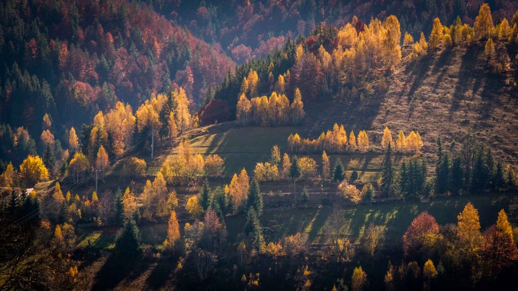The Apuseni Mountains - fall colors