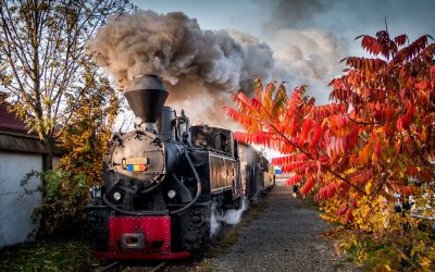 The best of fall colors in Romania in 13 pictures