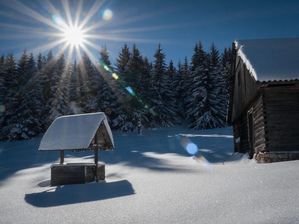 Sunshine in Winter