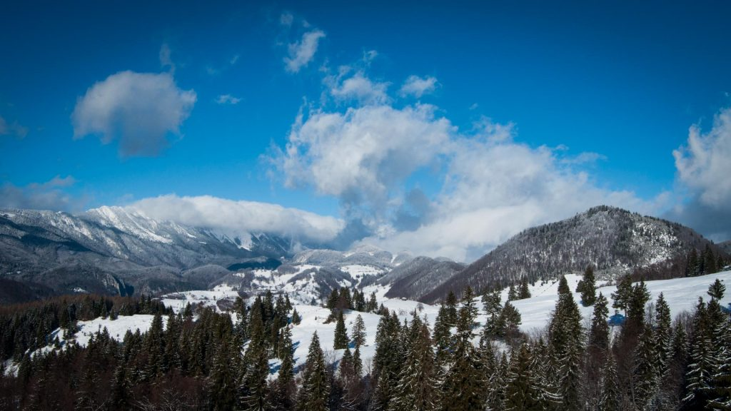 Winter in Romania - Carpathians