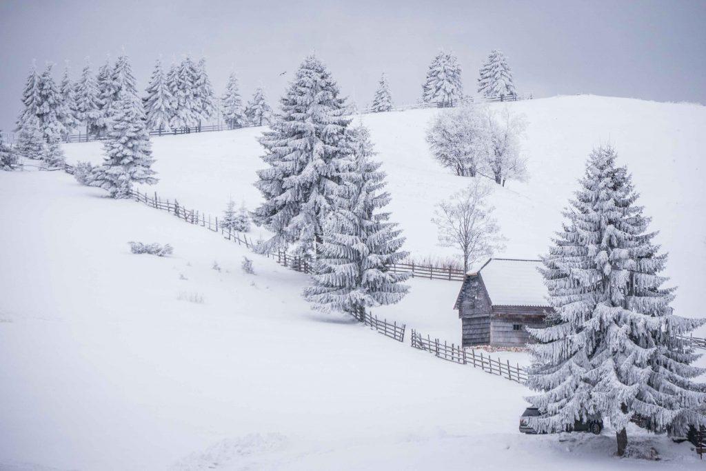 Wooden house in Bran area - Romania winter photo tour