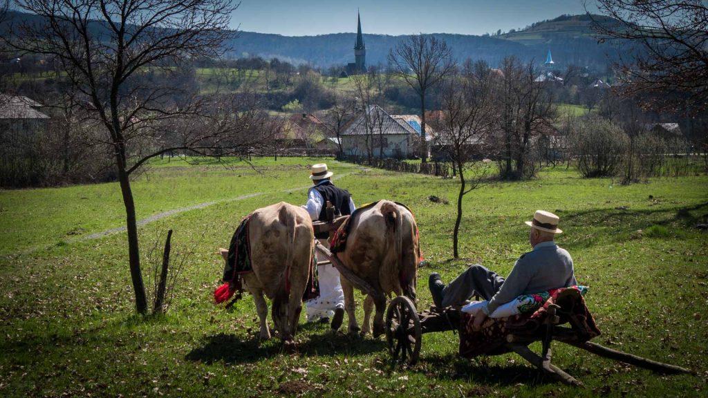 Customs and Festivals - Udatoriu