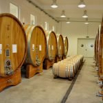 Wine Tour from Timisoara on 4th of July Weekend