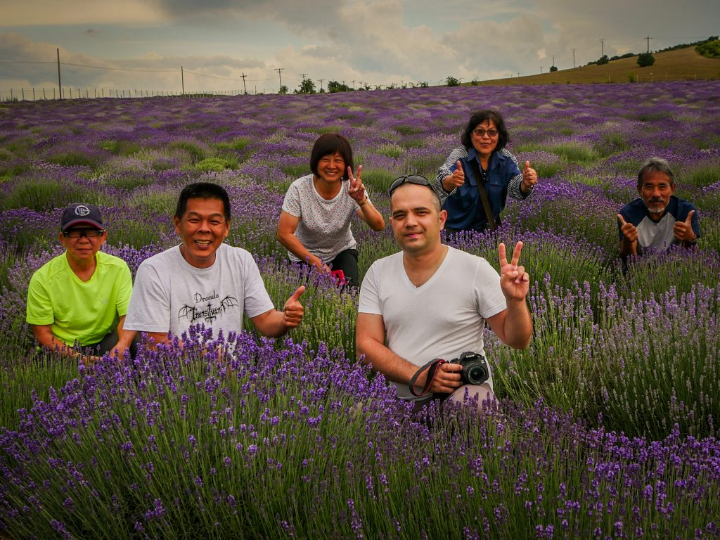 Tourists in lavender field in Romania