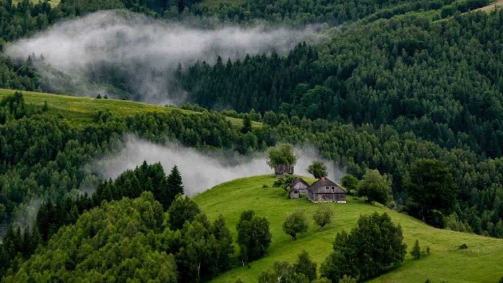Landscape of Romania in summer